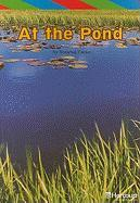 At the Pond - Carter, Roxanne