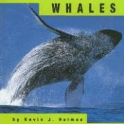Whales - Kevin J Holmes