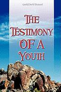 The Testimony of a Youth - Olusanmi, Ayodeji