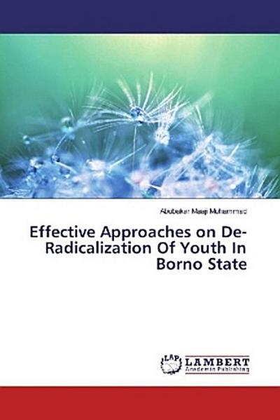 Effective Approaches on De- Radicalization Of Youth In Borno State