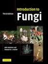 Introduction to Fungi - Revd Prof. John Webster