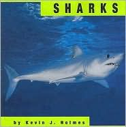 Sharks - Kevin J. Holmes