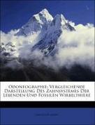 Giebel, Christoph: Odontographie: Vergleichende Darstellung Des Zahnsystemes Der Lebenden Und Fossilen Wirbelthiere