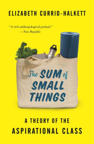 The Sum of Small Things: A Theory of the Aspirational Class - Elizabeth Currid-Halkett