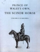 Prince of Wales's Own, the Scinde Horse - Colonel E. B. Maunsell