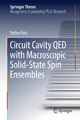 Circuit Cavity QED with Macroscopic Solid-State Spin Ensembles - Stefan Putz