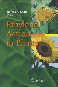 Ethylene Action in Plants - Nafees A. Khan (Editor)