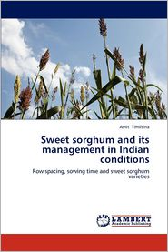 Sweet sorghum and its management in Indian conditions - Amit Timilsina