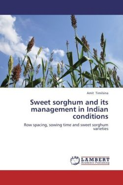 Sweet sorghum and its management in Indian conditions