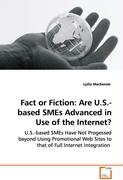 Fact or Fiction: Are U.S.-based SMEs Advanced in Use of the Internet?