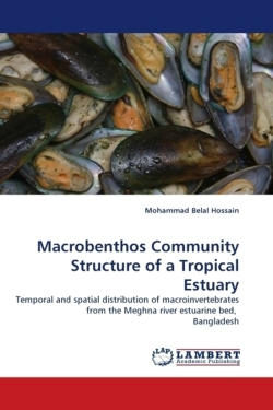 Macrobenthos Community Structure of a Tropical Estuary