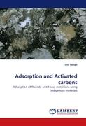 Adsorption and Activated carbons