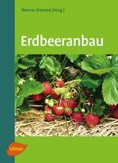 Erdbeeranbau - Werner Dierend, Ralf Jung, Tilman Keller, Erika Krüger-Steden, Ludger Linnemannstöns