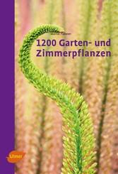 1200 Garten- und Zimmerpflanzen - Martin Haberer