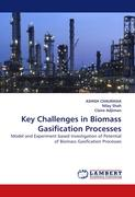 Key Challenges in Biomass Gasification Processes: Model and Experiment based Investigation of Potential of Biomass Gasification Processes