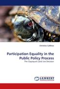 Participation Equality in the Public Policy Process